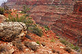 Grand Canyon National Park Supai Group, Hermit Trail.jpg
