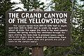 Grand Canyon of Yellowstone 4.jpg