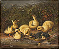 Group of Ducklings (Boston Public Library).jpg