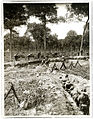 Gurkhas working on a fire trench and a communication trench (Photo 24-165).jpg