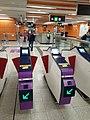 HK 港鐵 MTR 南港島線 South Island Line 利東邨站 Lei Tung Station January 2021 SS2 31.jpg