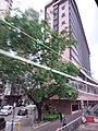 HK Bus 111 tour view WC Hung Hom Hong Chong Rd Chatham Road Ma Tau Chung Kok May 2019 SSG 10.jpg