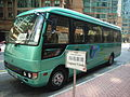 HK Hung Hom Laguna Verde Shuttle Bus green.JPG