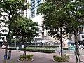 HK TKO 坑口 Hang Hau 常寧路 Sheung Ning Road October 2020 SS2 04.jpg