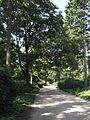 Hamburg Stadtpark DS148n.jpg