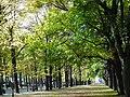 Hamm, Germany - panoramio (2356).jpg