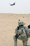 Hand Selected by Task Force Spartan Commander for Exceptional Service, Reserve MP Company Ends Mission in Iraq With Full-scale Air Assault DVIDS84906.jpg