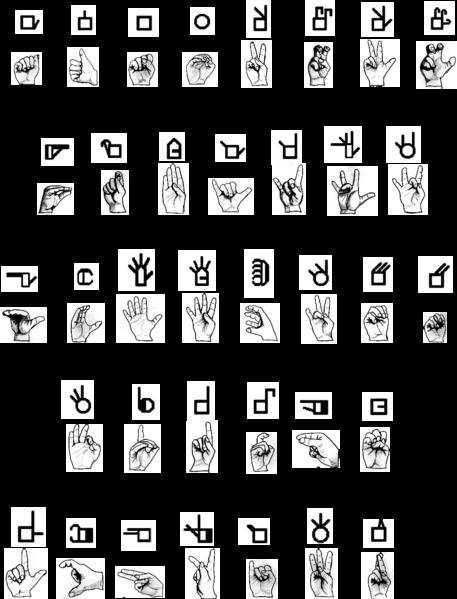 układy rąk