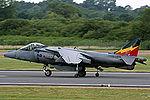 Harrier (5168690693).jpg