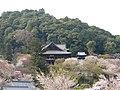 Hasedera Nara Spring02.jpg