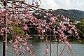 Heian Shrine (5767174674).jpg