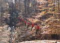Hemlock Overlook - Zip-line - 04.jpg