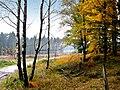 Herbst im Teutoburger Wald 01.jpg