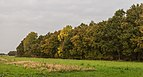 Herfstwandeling door het Wijnjeterper Schar 021.jpg