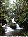 Hilo.waterfall.jpg
