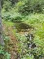 Hirschbrunnen (MGK23072).jpg