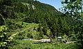 Holztransport, Nenzinger Himmel (1367 m ü.M.), Bezirk Bludenz, Vorarlberg.jpg