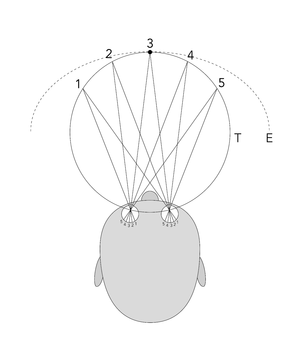 Horopter - Schematic representation of the theoretical (T) and the empirical (E) horopter.