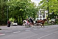 Horse Drawn Carriages in Interlaken 02.jpg