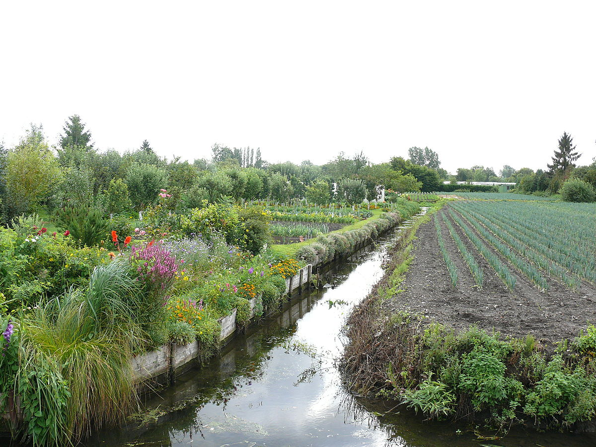 Hortillonnage wiktionnaire for Jardin wiktionnaire