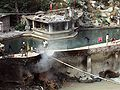 Hot springs at Manikaran,Himachal Pradesh.jpg