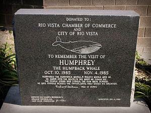 Humphrey the Whale - Granite monument in Rio Vista