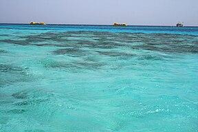 море и маяк картинки