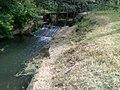 IMG 20160623 154256 река талица.jpg