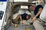 ISS-47 Tim Peake and Jeff Williams outfitting the vestibule to BEAM's entrance.jpg