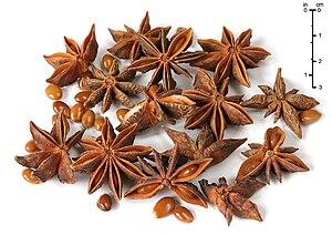 Früchte des Echten Sternanis (Illicium verum) als Gewürz