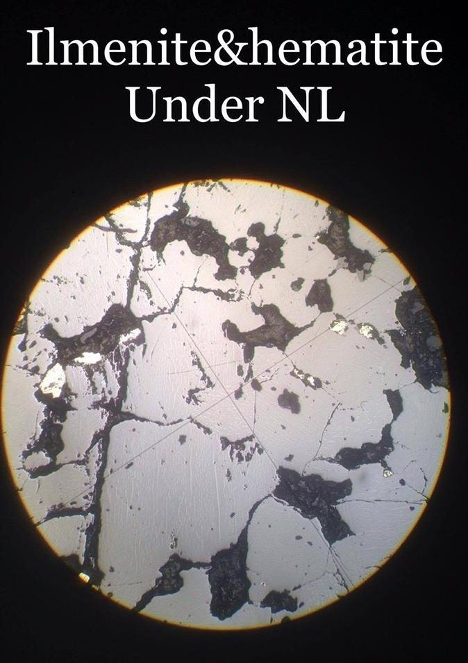 Ilmenite and hematite under normal light