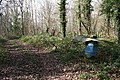 Improvised Pheasant Feeder - geograph.org.uk - 710211.jpg