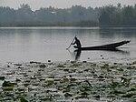 India - Srinagar - 037 - quiet morning on Nagin Lake.jpg