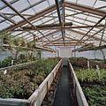 Interieur potplantenkas - Aalsmeer - 20404730 - RCE.jpg