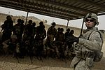 Iraqi soldiers zero and qualify in Mosul DVIDS179413.jpg