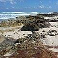 Isla Mujeres - panoramio (3).jpg