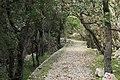 J35 844 Dolina Blaca.jpg