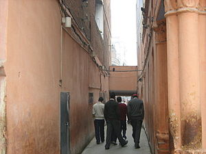Jallianwala Bagh - The narrow lane used for entering the park premises.