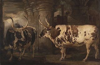 Portraits of two extraordinary oxen, the property of the Earl of Powis