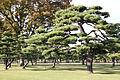 Japan - Tokyo (9979151845).jpg