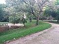 Jardin des Plantes de Poitiers 04.jpg