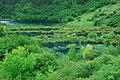 Jiuzhaigou, Aba, Sichuan, China - panoramio (78).jpg