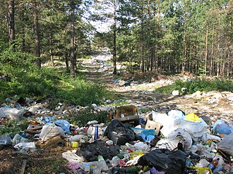 Olkhon Island - Unregulated waste disposal in the forest near Khuzhir