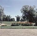 Kaivopuisto, taustalla meri - XLVIII-479 - hkm.HKMS000005-km0000m8ex.jpg