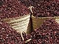 Karkady - Dried Hibiscus in Aswan souk.jpg