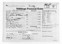 Camp file of a Polish political prisoner No. 382, Jerzy Kaźmirkiewicz