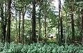 Kleines Haus im Wald - Hannover-Ricklingen An der Bauerwiese - panoramio.jpg