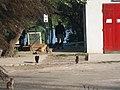 Kroate mit Katzen - panoramio.jpg