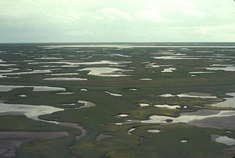 Yukon–Kuskokwim Delta - Image: Kuskokwim Delta Wetlands Aerial View