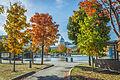 L'automne au Vieux-Port de Montréal (15440231666).jpg
